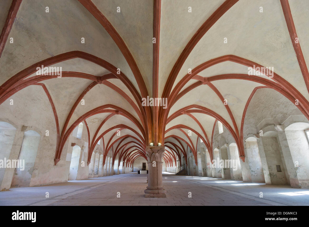 The Gothic crossribbed vault in the dormitory of Eberbach