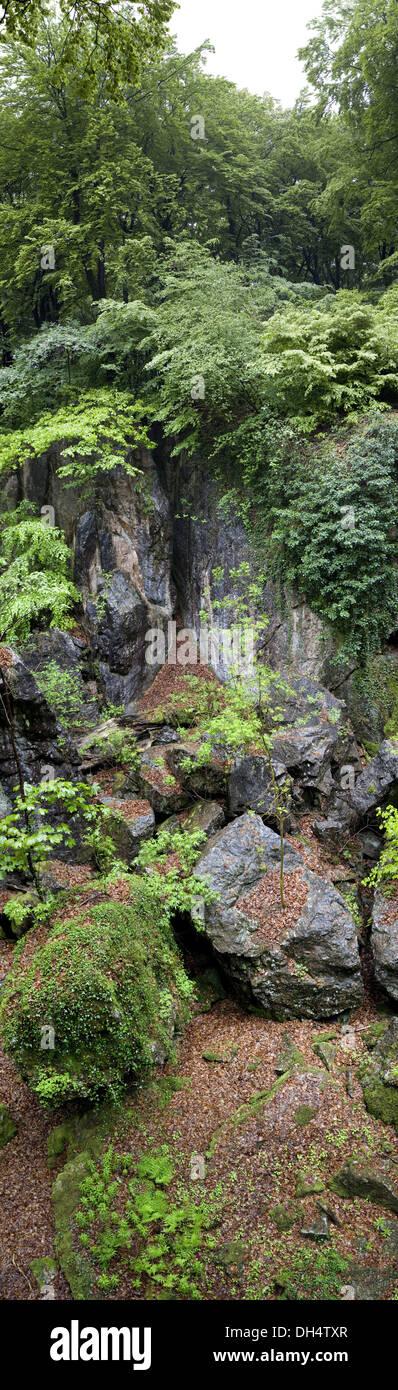 natural landscape in north rhine-westphalia