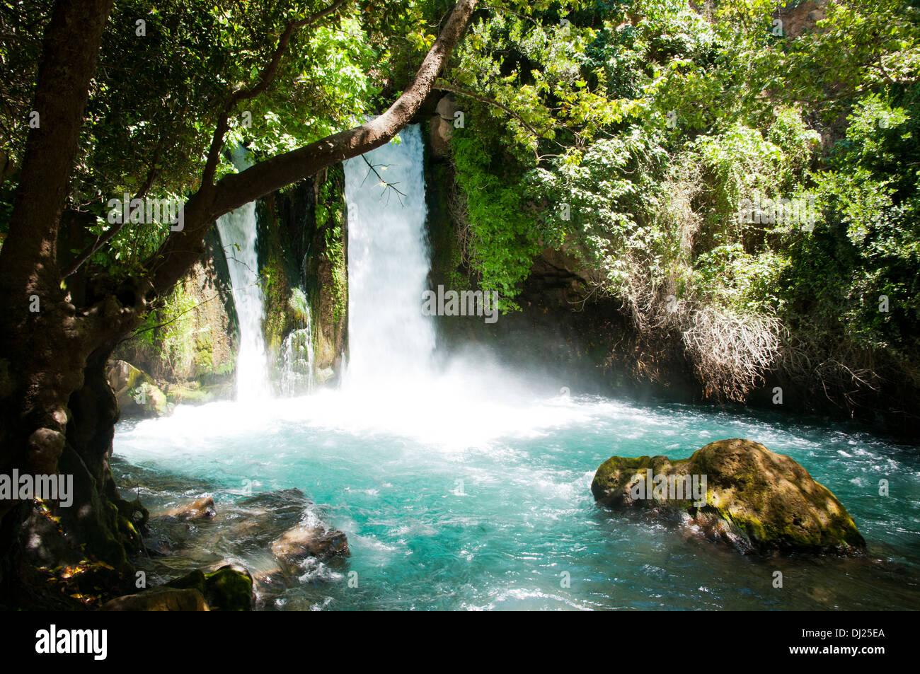 Hermon Stream Nature Reserve Banias Golan Heights Israel This Stock Photo
