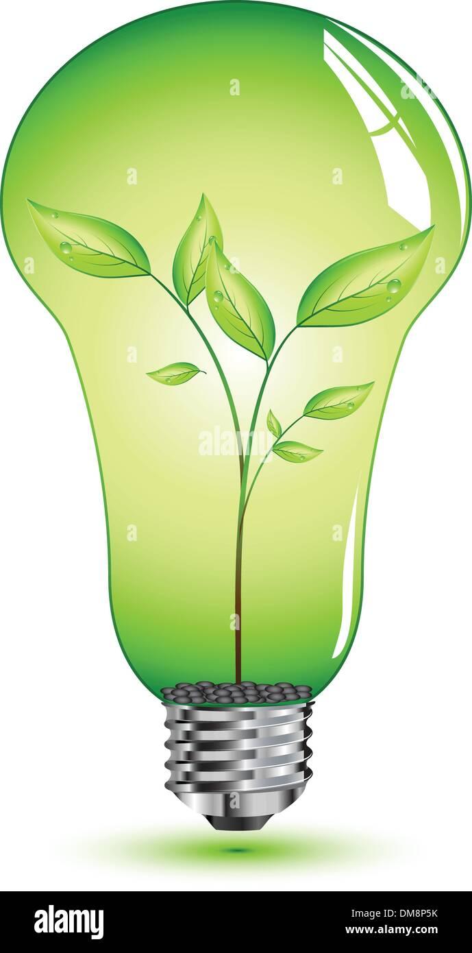 natural leaf inside light