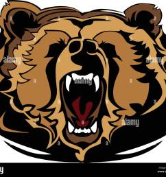 grizzly bear mascot head vector graphic [ 1300 x 1106 Pixel ]