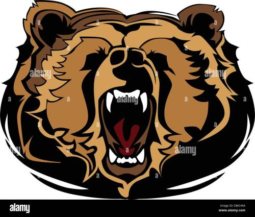 small resolution of grizzly bear mascot head vector graphic