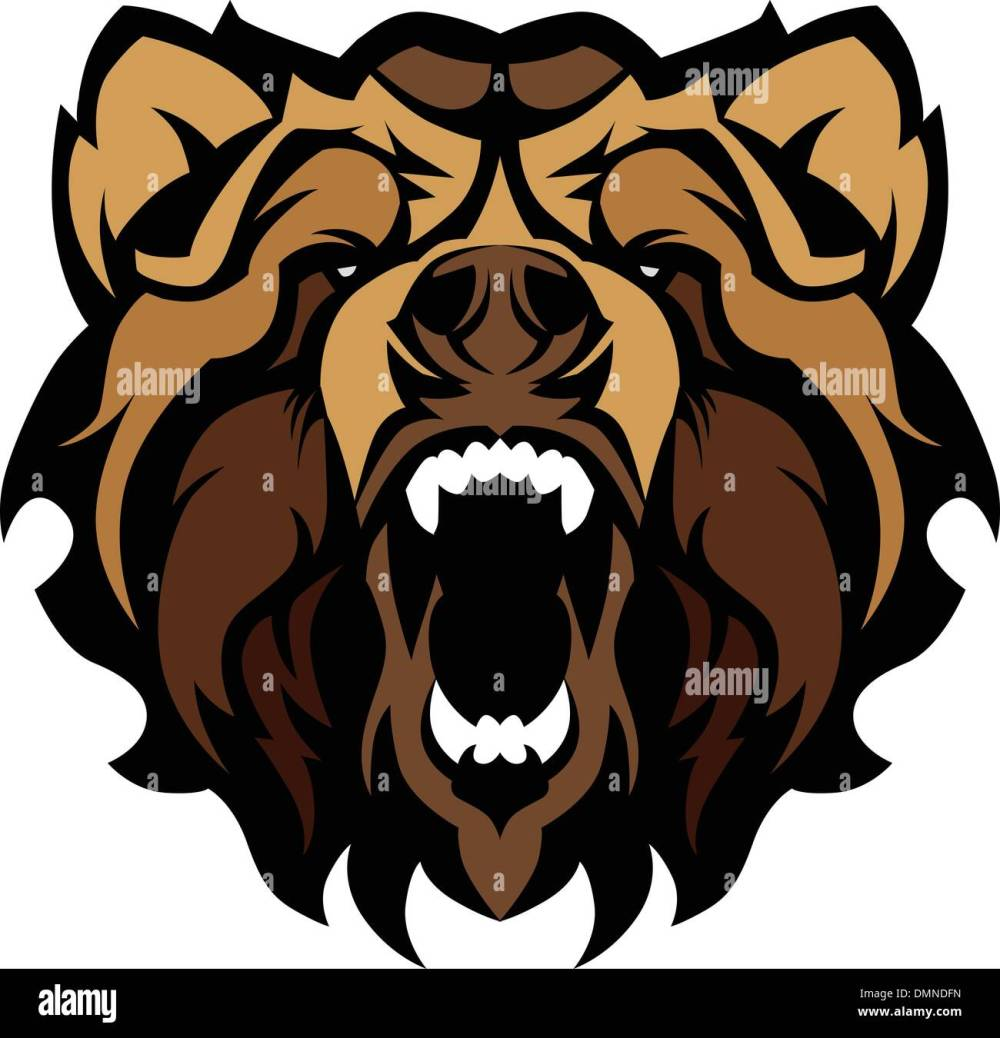 medium resolution of grizzly bear mascot graphic vector illustration stock image