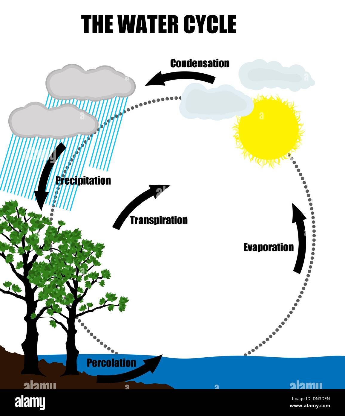 hight resolution of schematic representation of the water cycle in nature stock image