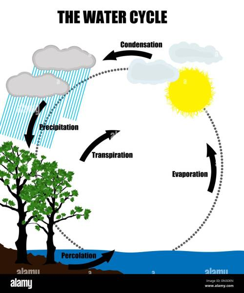 small resolution of schematic representation of the water cycle in nature stock image