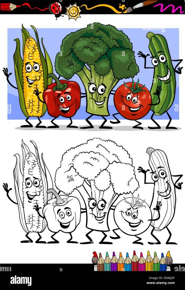 Fresh Green Cartoon Zucchini Stock &