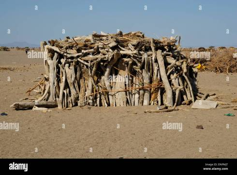 Afar hut made of sticks of wood in the south desert of Djibouti ...
