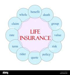 life insurance concept circular diagram in pink and blue with great terms such as benefit death policy and more  [ 1300 x 1390 Pixel ]