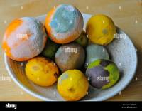 Mouldy moldy fruit left in a bowl Stock Photo, Royalty