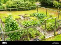 Backyard Vegetable Gardens 24 Fantastic Backyard Vegetable ...
