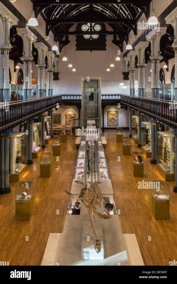 Interior Of Hunterian Museum University
