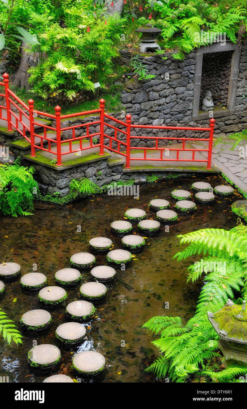 Garden Pond Design Yorkshire