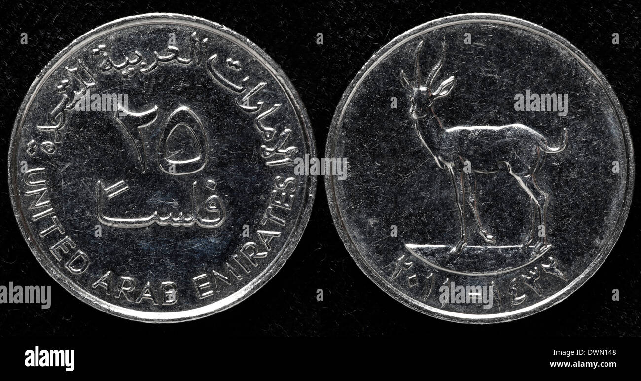 25 Fils Coin United Arab Emirates Stock Photo Royalty