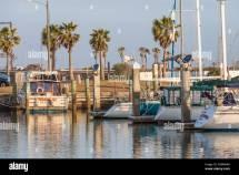 Boats Palm Tree Harbor Stock &