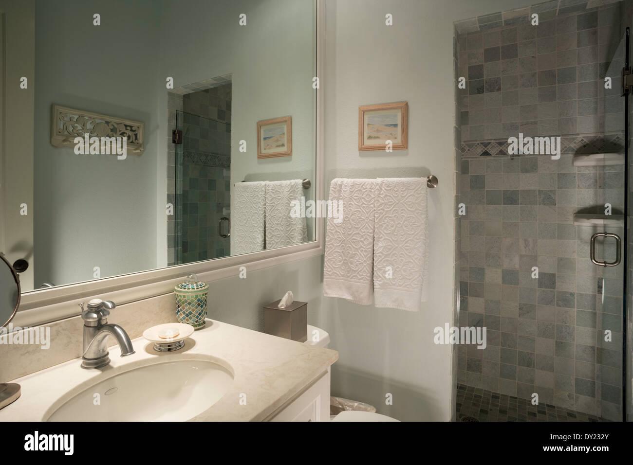 Clean And Tidy White Bathroom With Glass Shower Stall Door