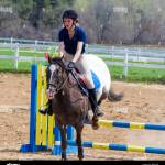 Woman On Appaloosa Horse Clearing A Jump At A Local Schooling Horse Stock Photo Alamy