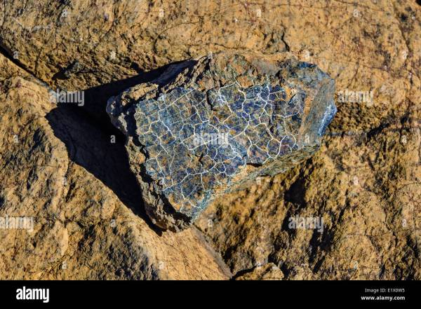 TABLELANDS Peridotite rock is rare at earth39s surface