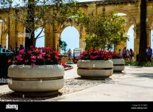 Upper Barracca Gardens Stock &