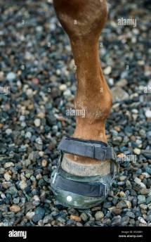 Saddle Shoes Stock & - Alamy