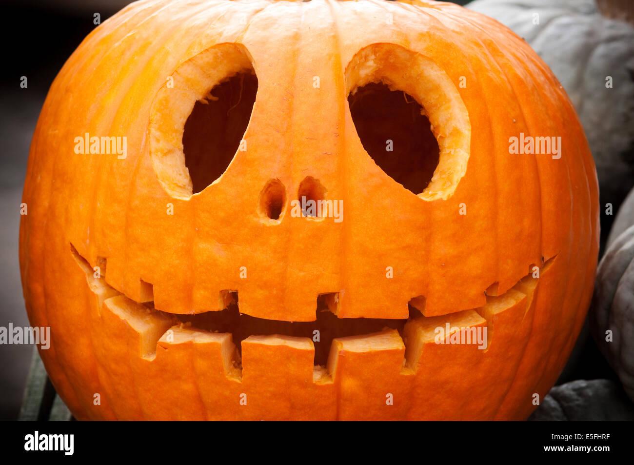 Halloween Pumpkin Cut Out Stock Photos Amp Halloween Pumpkin
