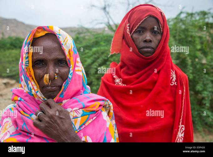 eritrean stock photos & eritrean stock images - alamy