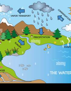 Illustration of funny water cycle stock image also diagram photos  images rh alamy