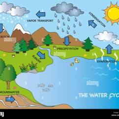 Picture Of Water Cycle Diagram Gm 4 Wire Alternator Wiring Illustration Funny Stock Photo 73630750