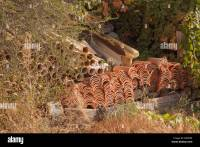 Rustic Roof Stock Photos & Rustic Roof Stock Images - Alamy