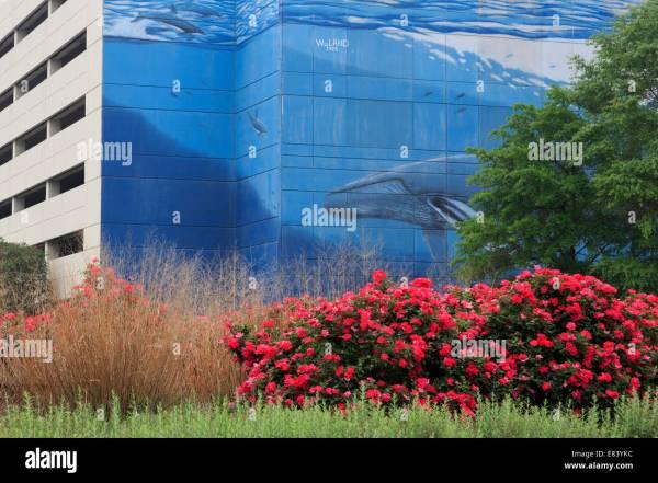 Wyland Stock & - Alamy