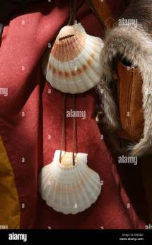 James Shells Stock & - Alamy