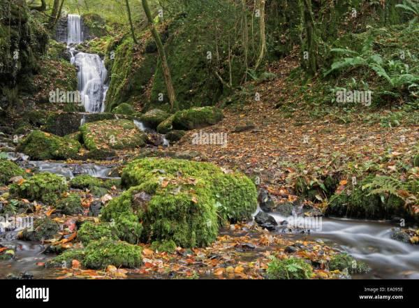 Waterfall Water Stream Dartmoor Stock &