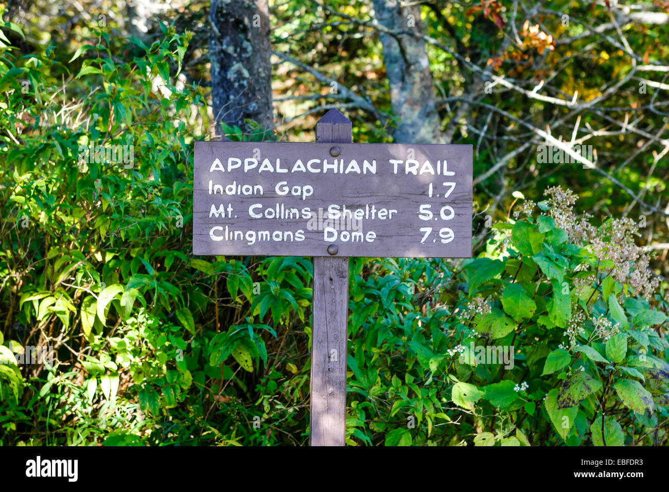 The Appalachian Trail Sign In The Great Smoky Mountains