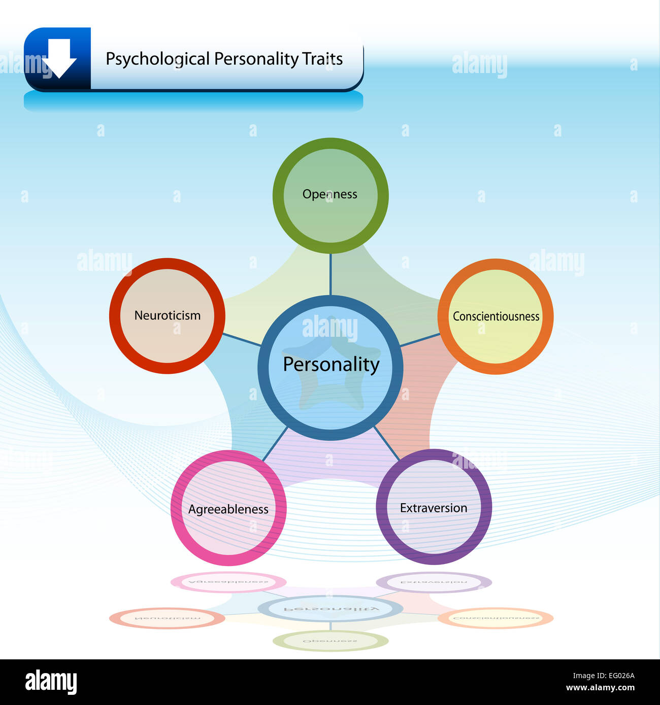 hight resolution of an image of a psychological personality traits chart diagram