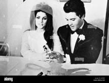 Priscilla Presley Black And White Stock &