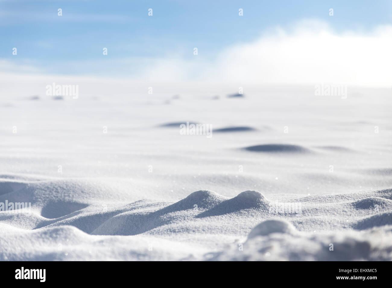 Germany, Baden-Wuerttemberg, Waldshut-Tiengen, Snow In