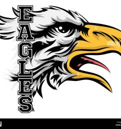 an illustration of a cartoon eagle sports team mascot with the text eagles stock image [ 1300 x 1089 Pixel ]