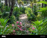 Tropical Gardens near Alum Chine, Bournemouth, UK Stock ...