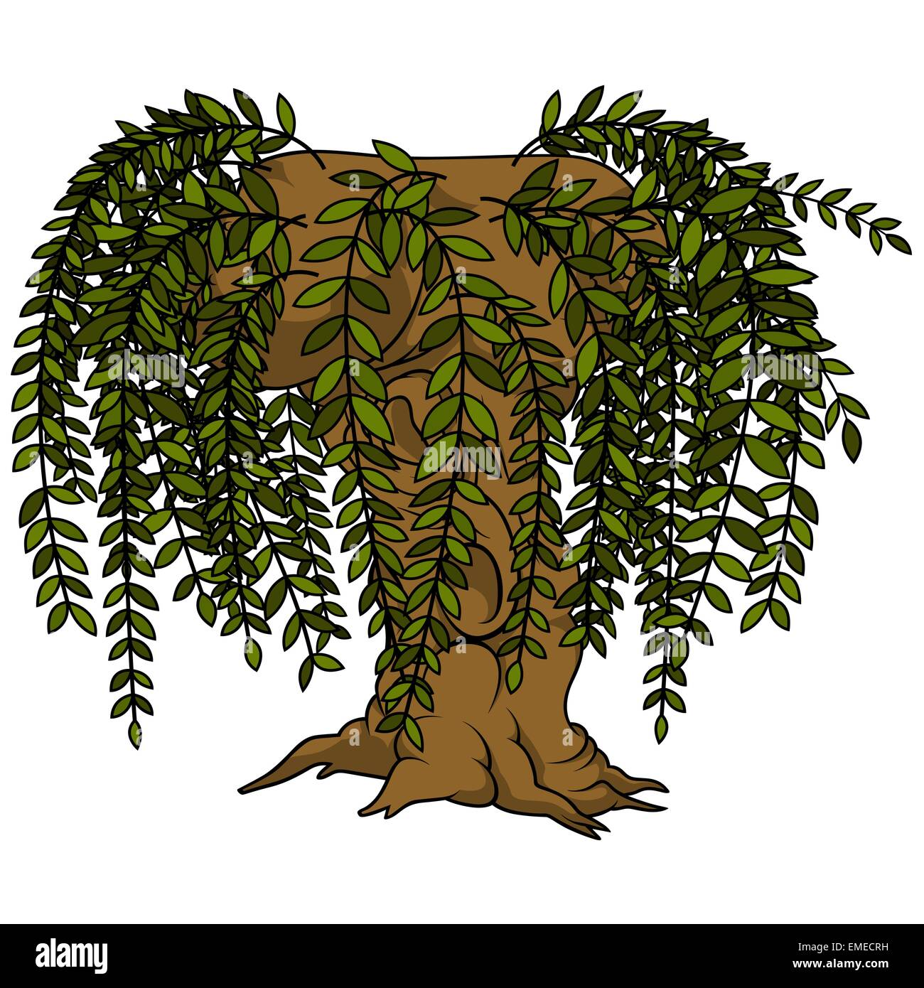 hight resolution of willow tree stock vector