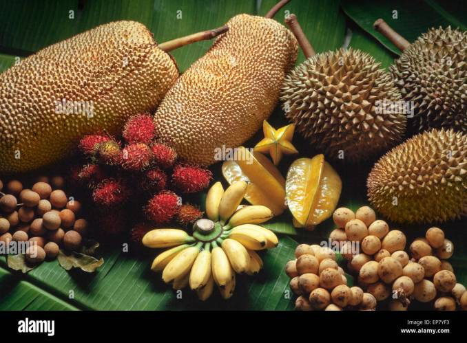 Image result for durian malaysian fruit