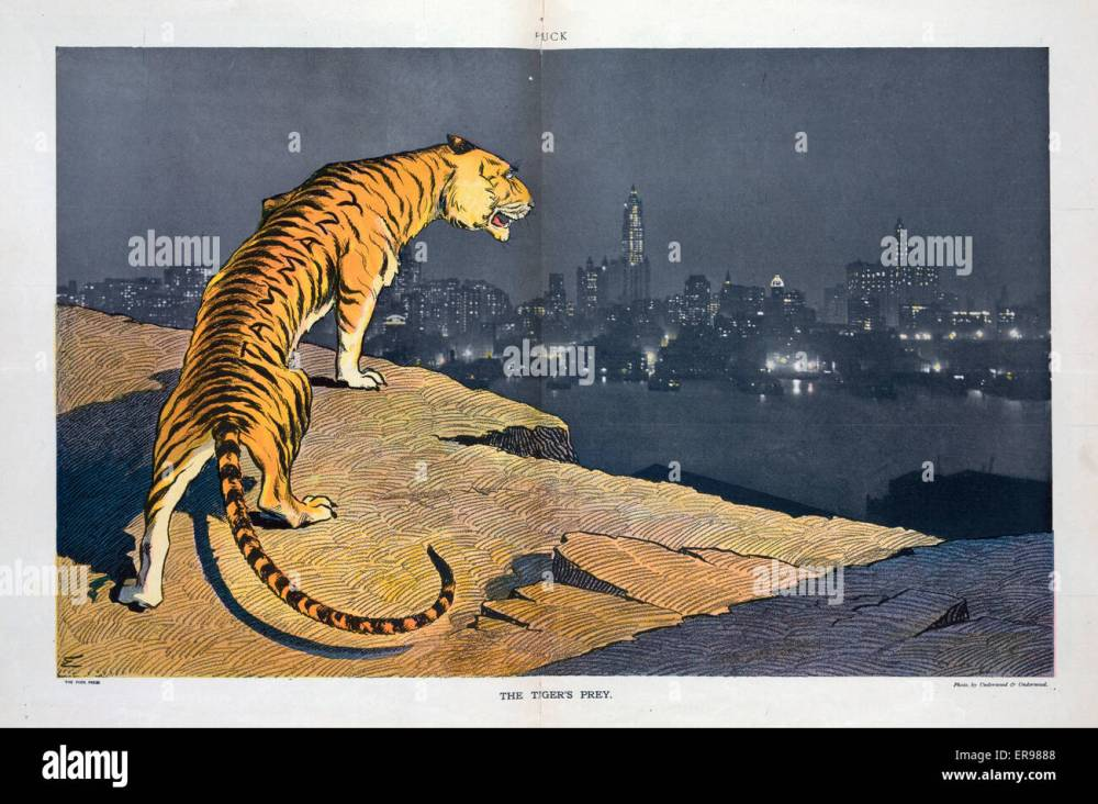 medium resolution of the tiger s prey illustration shows a tiger labeled tammany standing on the edge of a