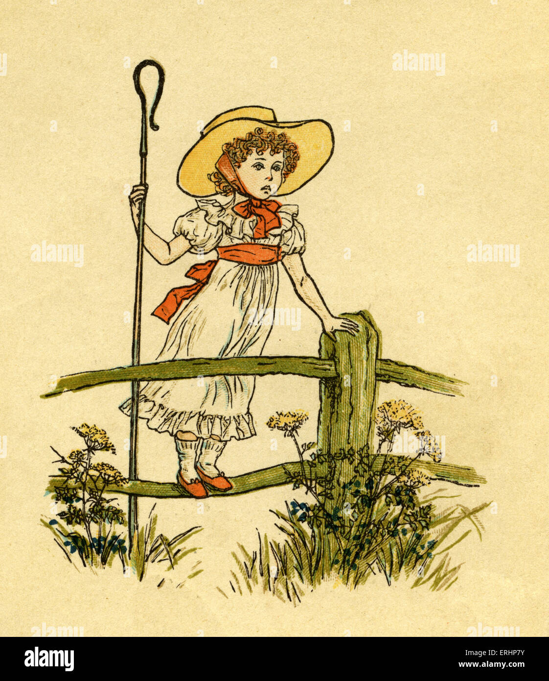 Little Bo Peep Has Lost Her Sheep Illustrated By Kate