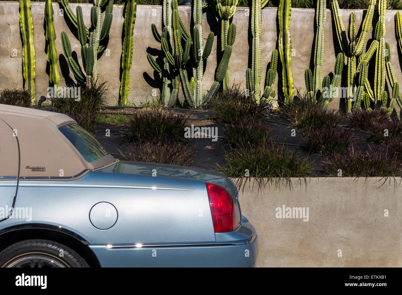 hight resolution of classic rag top lincoln town car viewed from left rear again wall and cactus