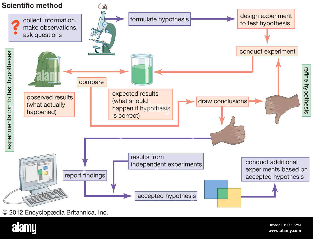 Flow Chart Of Scientific Method Stock Photo