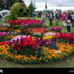 Flower Bed The Day Of The Dahlia By Birmingham City Council At Rhs Stock Photo Alamy