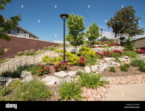 xeriscape landscaping