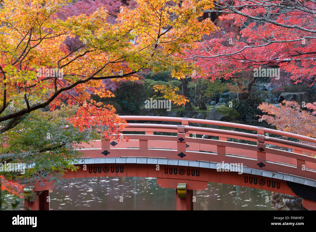Falling Leaves In Water Live Wallpaper Japanese Bridge And Temple Garden In Autumn Daigoji