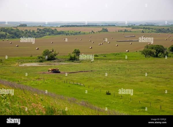 Great Plains Landscape