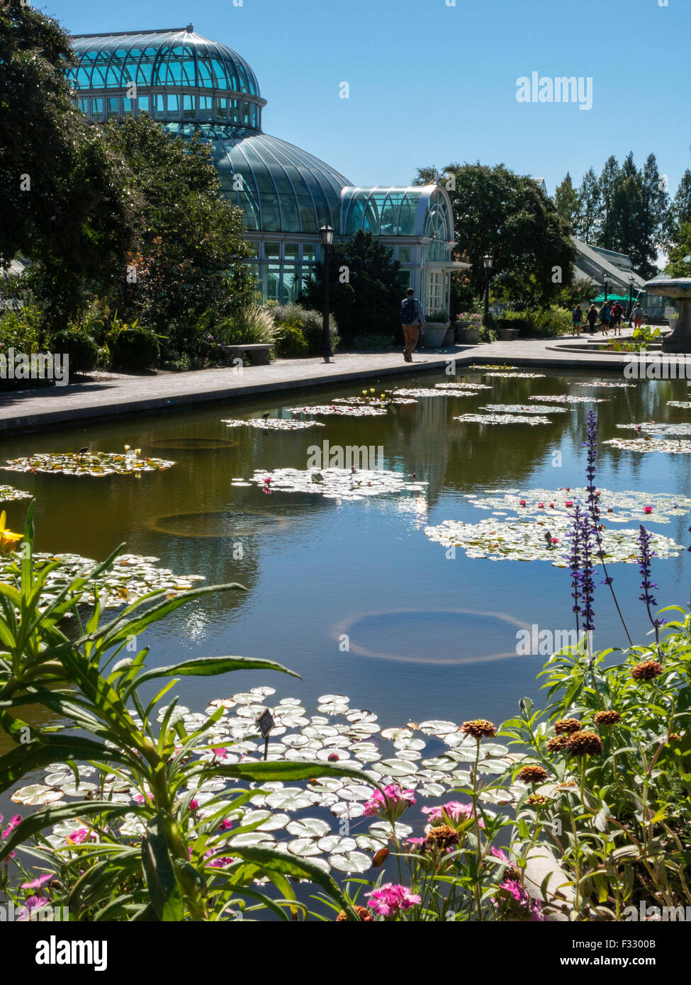 Bernstein the architects marion weiss and michael manfredi are well known at the brooklyn botanic garde. Lily Pool Terrace In The Brooklyn Botanic Garden Nyc Usa Stock Photo Alamy