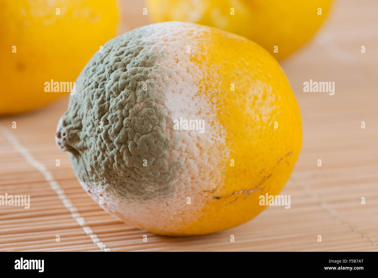 Mouldy Fruit Stock Photos & Mouldy Fruit Stock Images