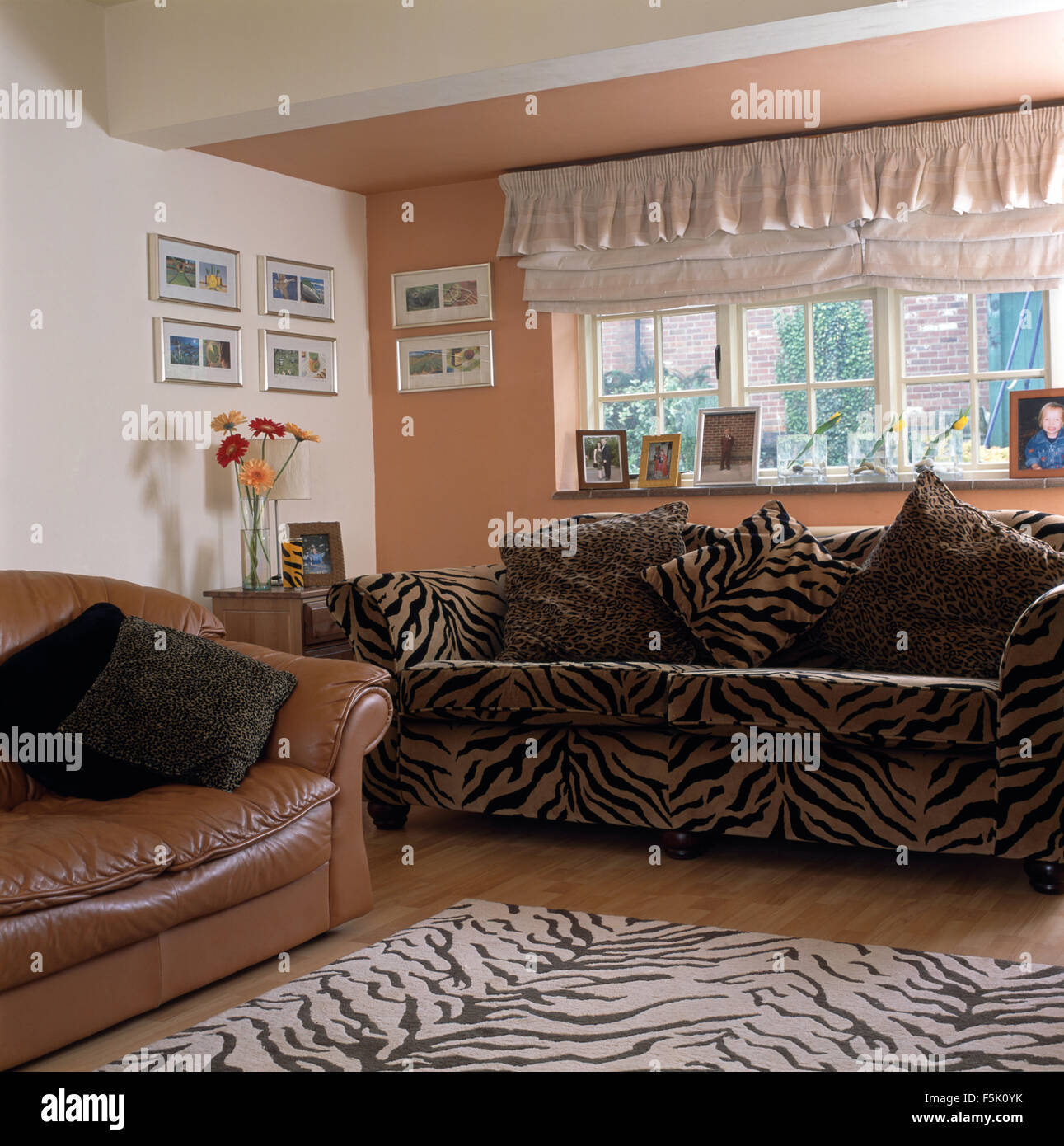 tiger print chair back pain office frilled blind above sofa and matching rug in